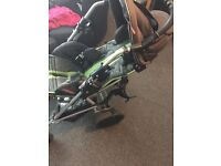 Special needs pushchair patron