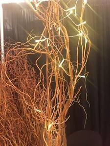 Rustic Wedding Decor- Curly Willow Branches! Cambridge Kitchener Area image 3