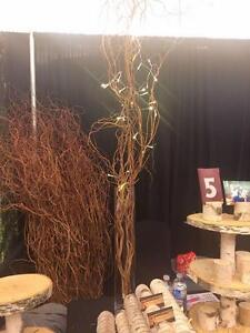 Rustic Wedding Decor- Curly Willow Branches! Cambridge Kitchener Area image 2