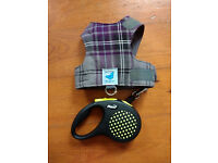 Escape proof Cat Harness and flexi tape retractable lead Butterfly harness