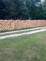 Great quality hardwood firewood