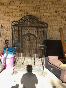 Large bird cage Medowie Port Stephens Area Preview