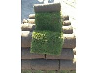 Turf, Cultivated Grass, Top Soil