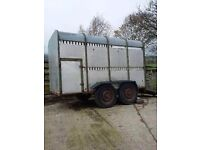 Ifor Williams Cattle trailer for sale