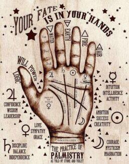Indian Astrologer In Melbourne