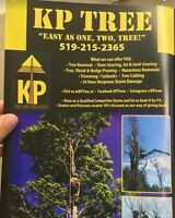 Tree Removal/Pruning