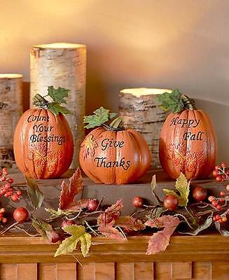 Set Of 3 Harvest Pumpkins Fall Thanksgiving Phrases Rustic Table Home Decoration