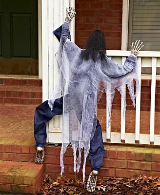 Life-Size Climbing Creepy White Zombie Outdoor Halloween Decoration