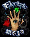 Electric Mojo USA
