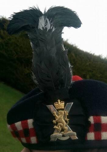 Black Cock Hackle Royal Regiment of Scotland Glen Gary