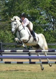 Been There, Done That Jumper/Eventing Gelding