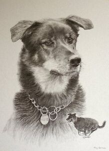 Pet Portraits  ..photos...also in Oil, or Graphite