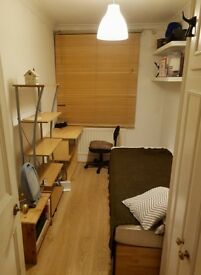 Single room in 3 bed flat for rent