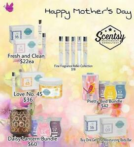 SCENTSY SALE  also scentsy bricks for sale  april only