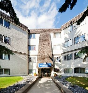 STUDENT SPECIAL - Quiet Building Close to Southgate Mall Edmonton Edmonton Area image 10