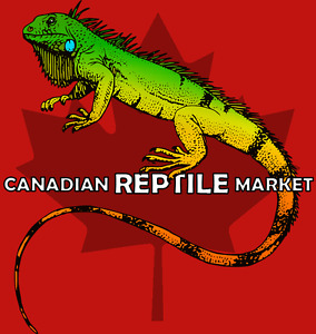 CANADIAN REPTILE MARKET | CANADA'S NEWEST REPTILE CLASSIFIEDS