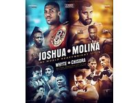 ANTHONY JOSHUA VS ERIC MOLINA & WHYTE VS CHISORA, SAT 10TH DEC @ MANCHESTER ARENA - £100 EACH X 2NR