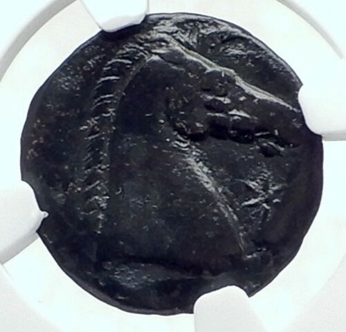 Carthage In Zeugitania Ancient Greek Coin Of Sardinia Tanit Horse Ngc I81203