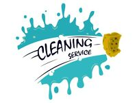 Cleaning/Ironing services