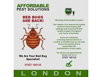 Bed Bug Eradication