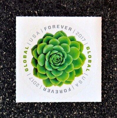 2017Usa  5198 Global Forever   Green Succulent  Single Mint  International Sase