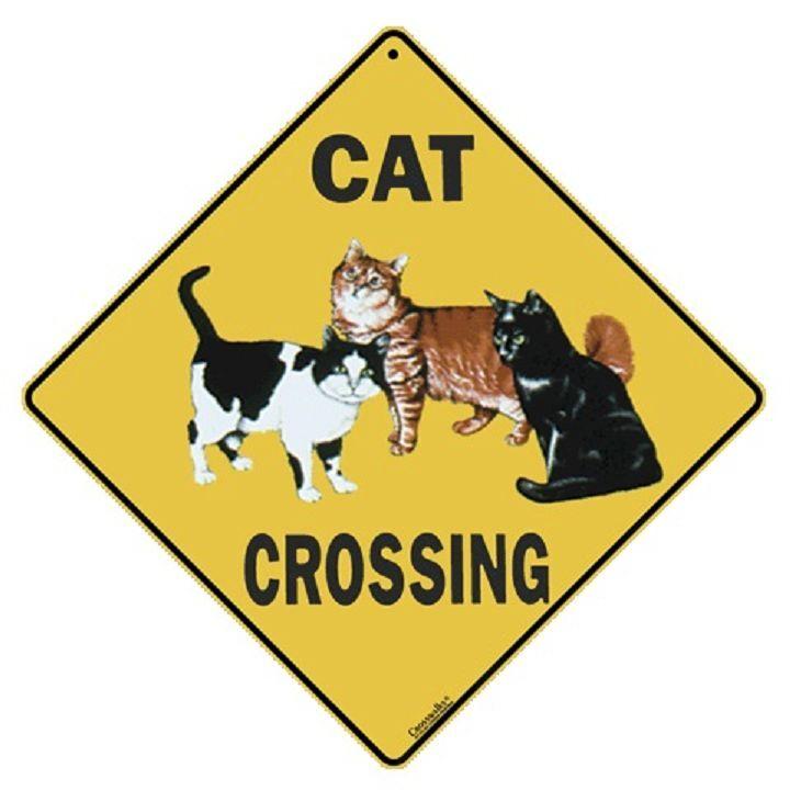 "Cat Metal Crossing Sign 16 1/2"" x 16 1/2"" (HANGING) Diamond shape Made USA #89"