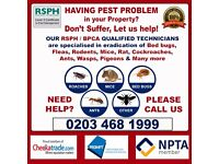Affordable Pest & Vermin Control (Bed bugs, Cockroaches, Mice, Fleas) in Hendon, Kilburn, Hampstead