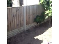 14 feather edge fence panels 6by3