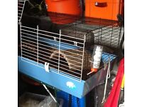 Gineau pig cage £10.00