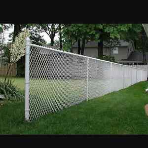 Wtb white chain link fence