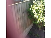 Feather Edge Fence Panels 6x3ft