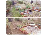 Happy Gardens Company 2017. Gardening Services - SW London. We can make you & your garden happy!