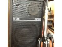PUBLIC ADDRESS SYSTEM SUITABLE FOR BAND