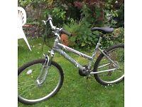 Lady's Raleigh quality bike