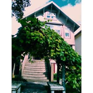 ROOMMATE WANTED for bright&spacious room in cute apt (Sept 1)