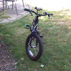 Boy's Raleigh Striker Bicycle