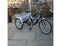 Viking ladies 3 wheel bike, with 6 gears, basket and foot pump for tyres