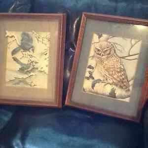 PAPERTOLE PICTURES.OWL/ BLUEJAYS 3D NEW PRICE