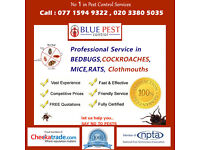 Low Cost Pest Control Service from £40.00 | 24/7 Same Day Service in London Area Call 0203 380 5035
