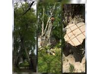 LBD LANDSCAPING & TREE WORK