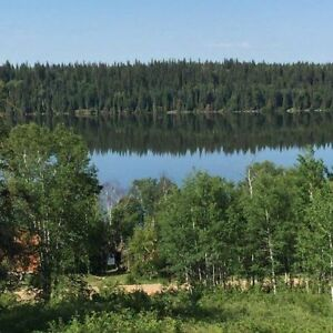Lakefront Lot at Cowan Lake for Sale