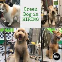 Dog groomer wanted: willing to train