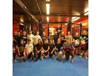 MMA (Mixed Martial Arts) training in Croydon, Cheam and Dorking. Surrey. South London.