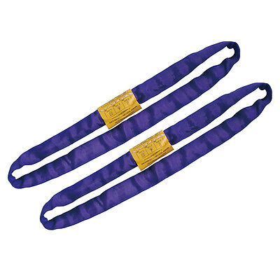 Endless Round Lifting Sling Heavy Duty Polyester Purple 2'. Sold in Pair