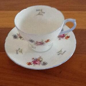Shelley Floral Cup and Saucer Taren Point Sutherland Area Preview