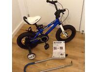 Royal Baby Blue Bike