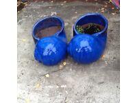 Garden Seashell pots
