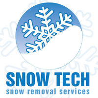 London Residential Snow Blowing Removal Services - 24/7