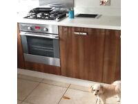 Stainless steel oven/hob/splash back/ and extractor