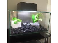 Fluval Edge 23 litre tank with accessories